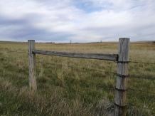 "Doug Adkins ""Dirt Roads And Fence Lines"""