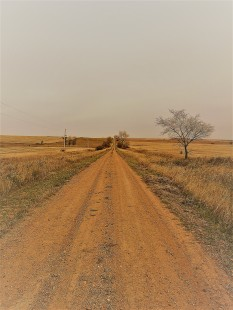 "Doug Adkins ""Dirt Roads And Fence Lines"""